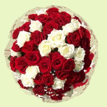 Букет № 32 из красных и белых роз