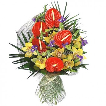 Букет № 55 из антуриума, орхидей и орнитогаллума