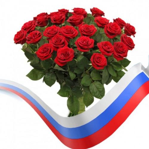 роза российская фото