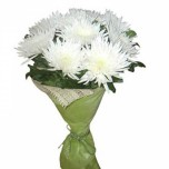 букет из белых хризантем № 4